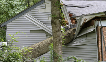 Will Insurance Cover Roof Damage? A Quick Guide to Roof Replacements and Your Insurance Policy