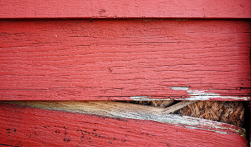 Wood Siding Problems