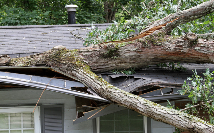 Questions to ask a roofer when you have storm damage.