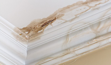 Do You Have Water Damage_ Check These 7 Things to Know for Sure