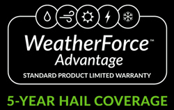WeatherForce Logo